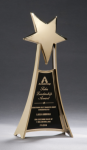Star Casting Trophy in Gold Tone Finish Gold Star Cast Awards